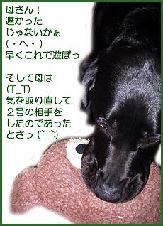 061013_1.jpg