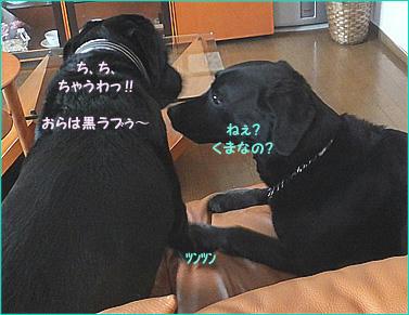 120610_10.jpg