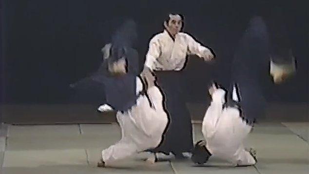 達人の合気 砂泊諴秀の解説演武 ...