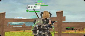 20071124_no1.jpg