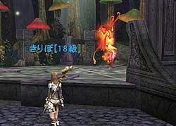 20081028_no7.jpg