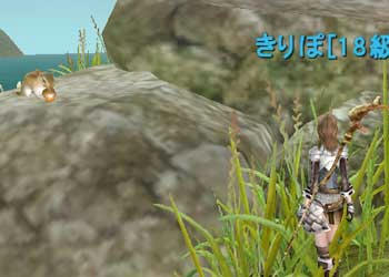 20081029_no1.jpg
