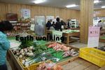 能勢(くりの郷) で売っていた新鮮な野菜