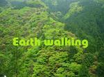 奈良の山々の緑