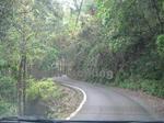 玉置神社への山道