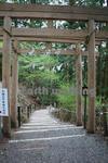駐車場から玉置神社へと続く道