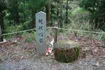 十津川村指定天然記念物の枕状熔岩