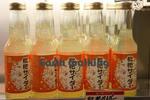 道の駅『うずしお』で売っていた枇杷サイダー