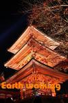 清水寺の三重塔のライトアップ