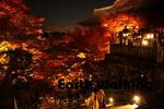 清水寺の釈迦堂付近の階段のライトアップ