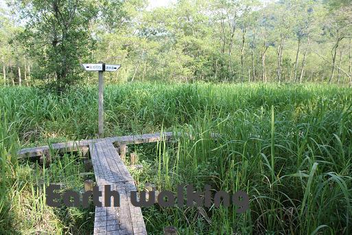 池河内湿原