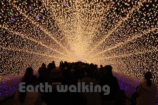 なばなの里のイルミネーション「冬華の競演」光のトンネル