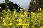 平草原公園の花