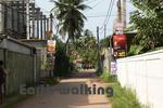 ニゴンボ(Negombo)のホステルの周辺