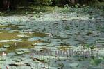シーギリヤロック(Ancient City of Sigiriya)の水路