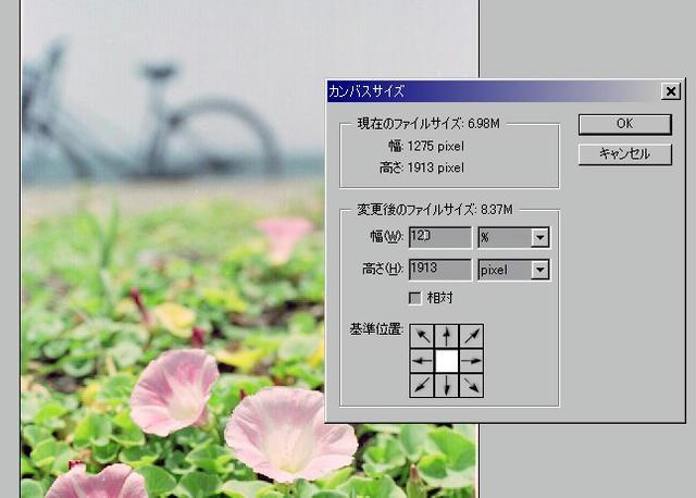 003_910526widthsize.jpg