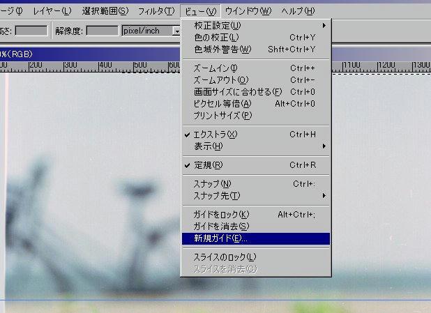 004_910526guide.jpg