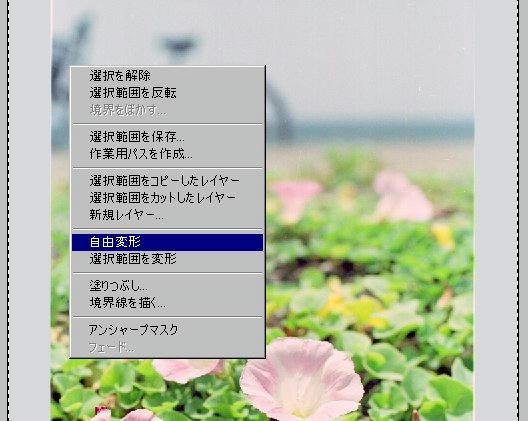008_910526henkei.jpg