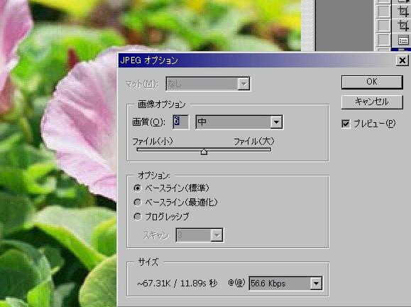 022_910526hozon.jpg