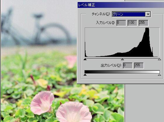 029_910526gorg.jpg