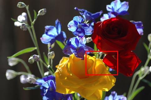 001_d70s_iso_0980_02.jpg