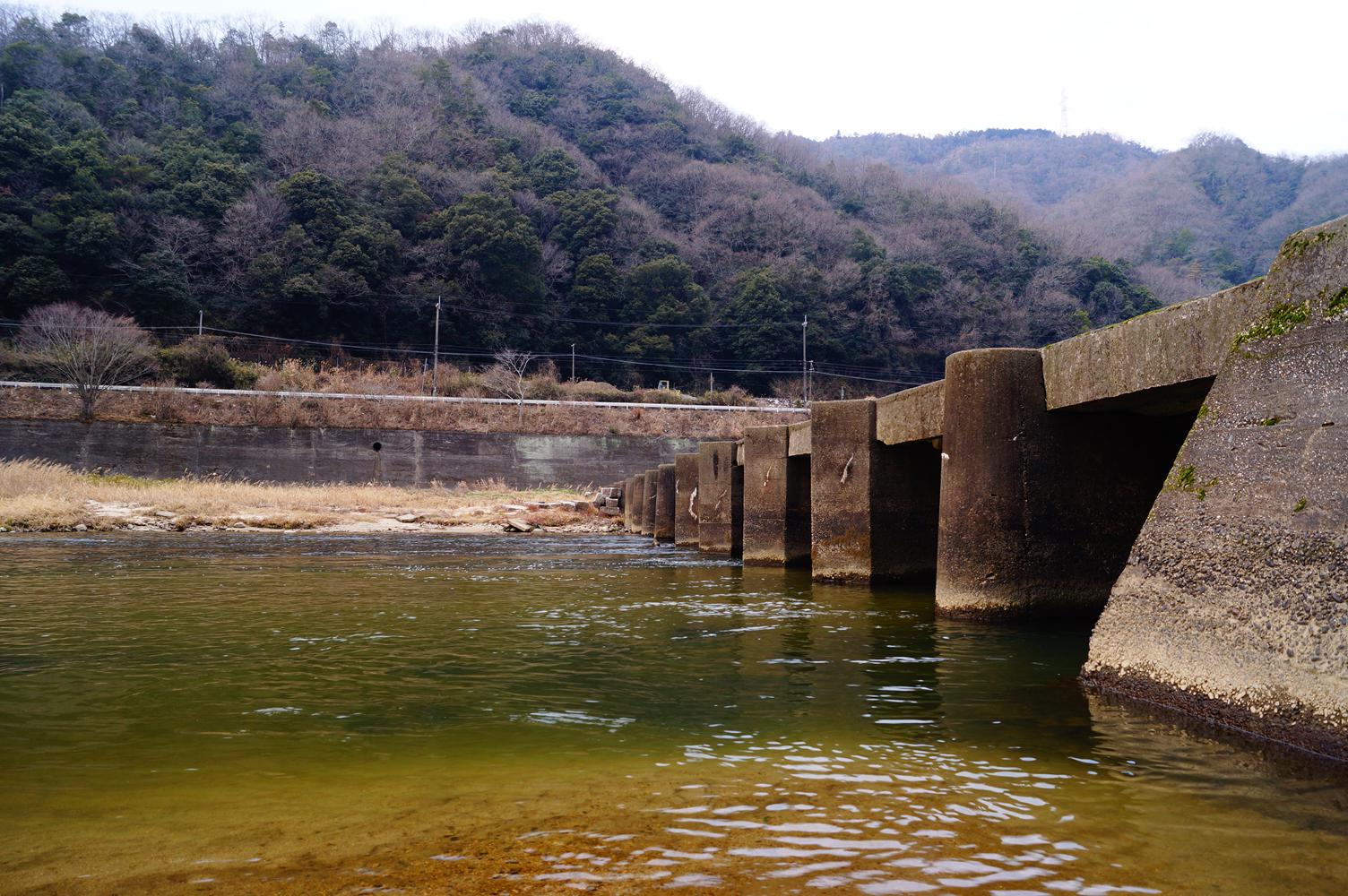 kyotoPref18.jpg