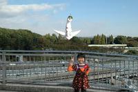 071104_banpaku1.JPG