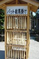 080616_yakyuu4.JPG