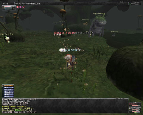 ffxi_2011.05.28_19.58.49.jpg