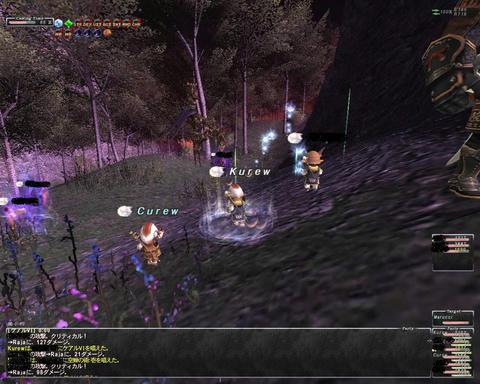 ffxi_2011.06.12_01.57.07.jpg