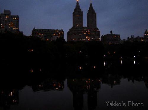 central park-4