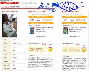 カンちゃんのお食事管理シート@日清製粉サイトより