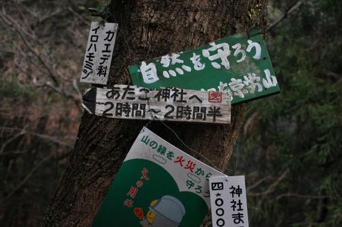 京都 初詣 冬山 愛宕山 愛宕神社