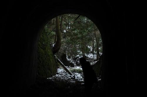 京都 清滝 愛宕山 ケーブル跡 トンネル