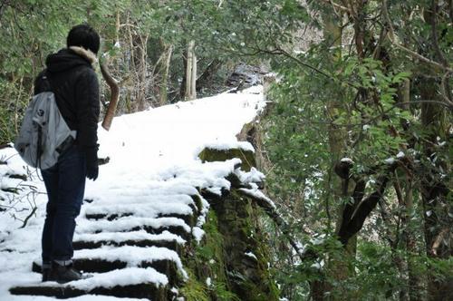 京都 清滝 愛宕山 ケーブル跡