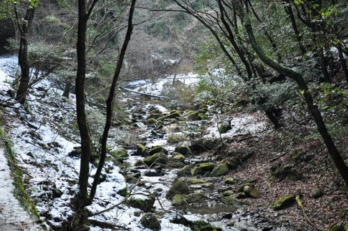 京都 清滝川 京都一周トレイル 雪 冬