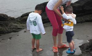 浜辺の怪獣達