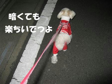 IMG_5095_R.jpg