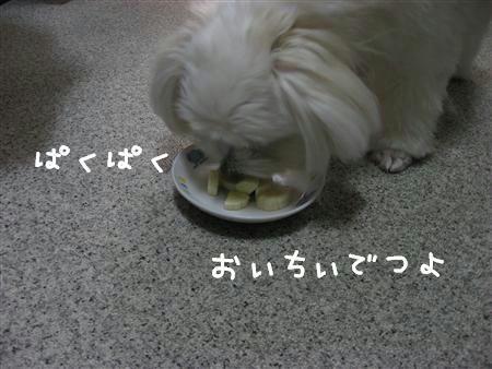 IMG_5674_R.jpg