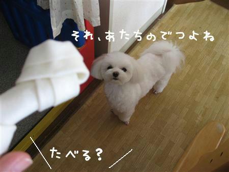 IMG_5721_R.jpg