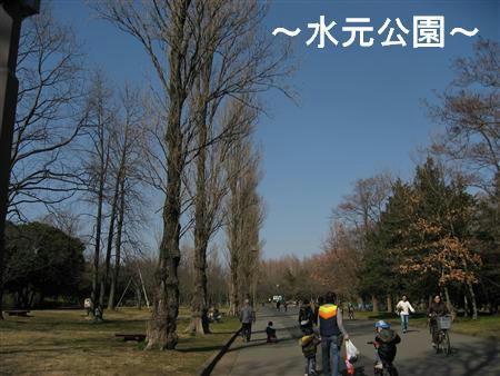 IMG_6476_R.jpg