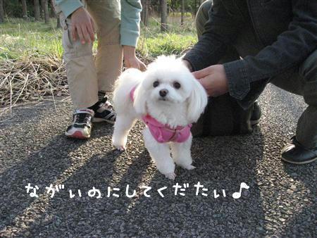 IMG_6832_R.jpg