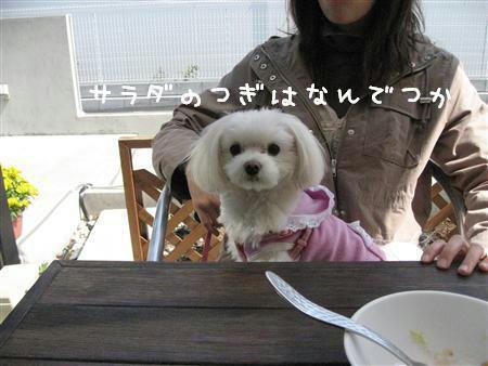 IMG_7184_R.jpg