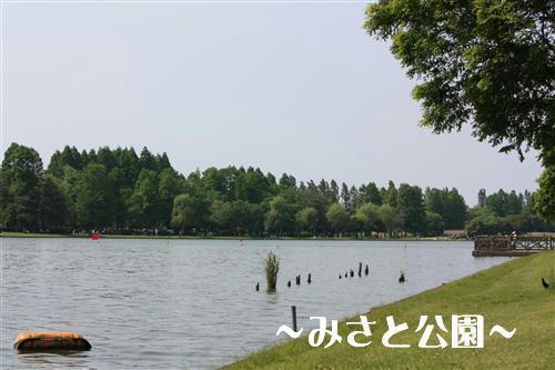 IMG_1335_R.jpg