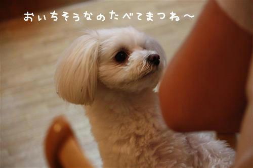 IMG_1654_R.jpg