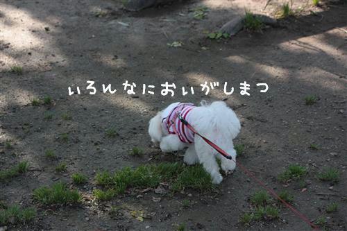 IMG_2813_R.jpg