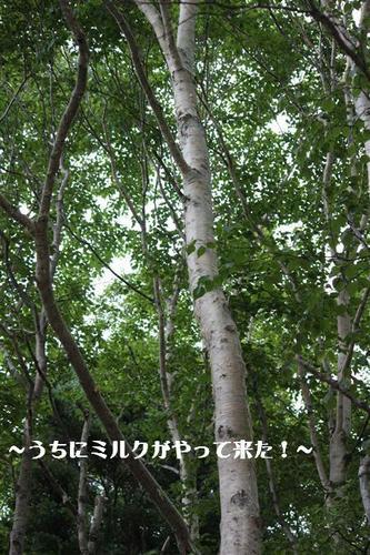 IMG_6588_RR.jpg