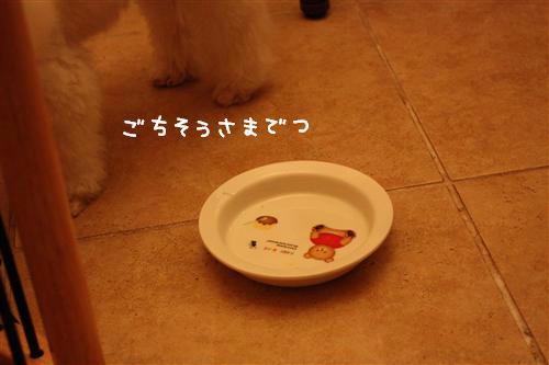 IMG_7684_RR.jpg