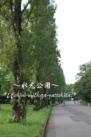 IMG_8193_RR.jpg