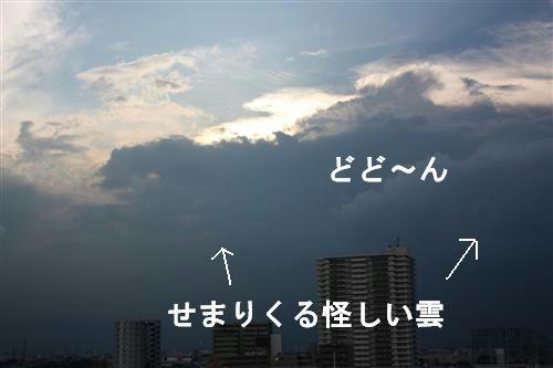IMG_9415_RR.jpg